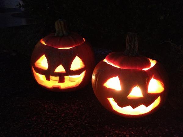 Pumpkins carved for Halloween.